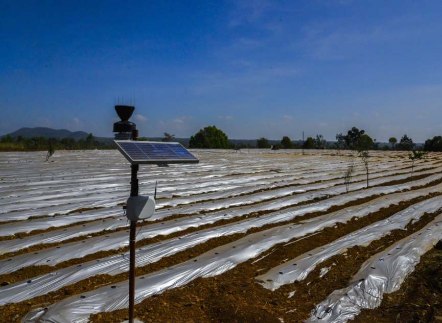 HPE CoE upskills students on IoT-based agriculture to help farmers in Andhra Pradesh