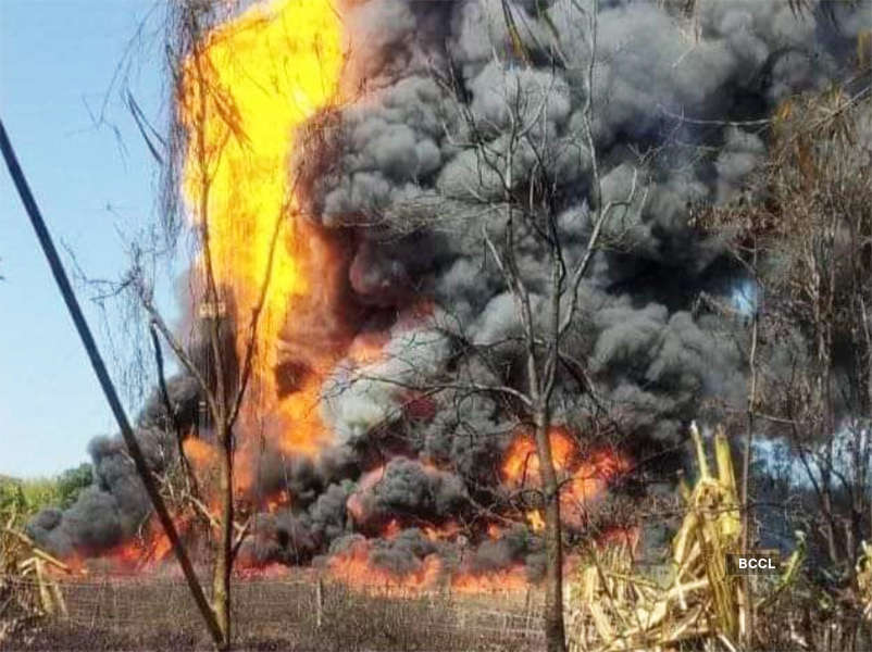 Shocking pictures from damaged ecological zones after oil well explodes in Assam