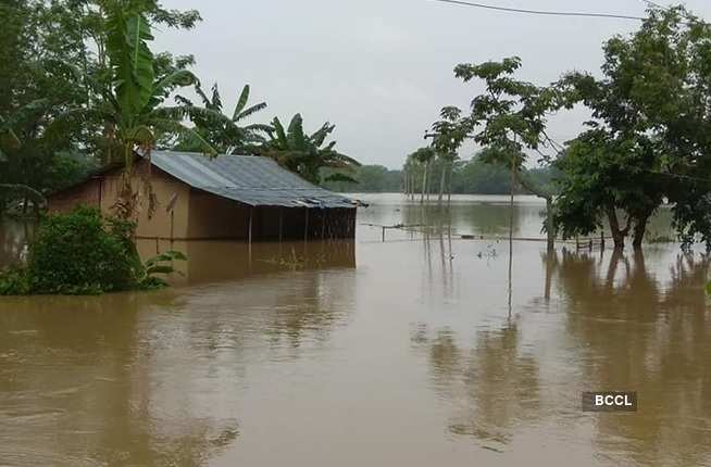 These flood pictures expose the grim situation in Assam