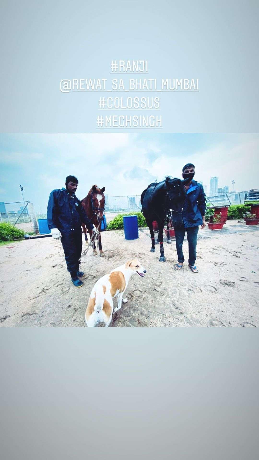 Randeep Hooda Official Instagram  (3)