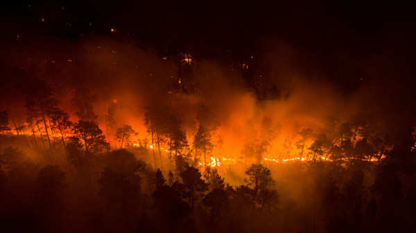 Massive wildfires in Siberia engulf area larger than Greece