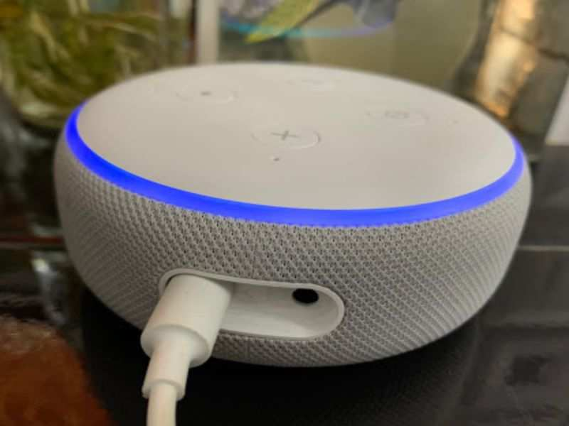 A smart speaker can do the job of your landline and also send messages