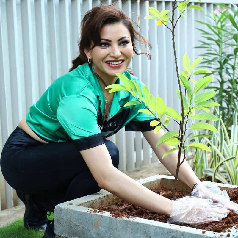 Pictures of celebs participating in 'Green India Challenge' will inspire you to plant a sapling