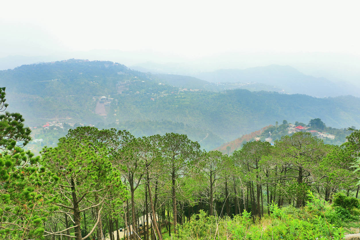 Stunning places in Himachal that are perfect for working remotely