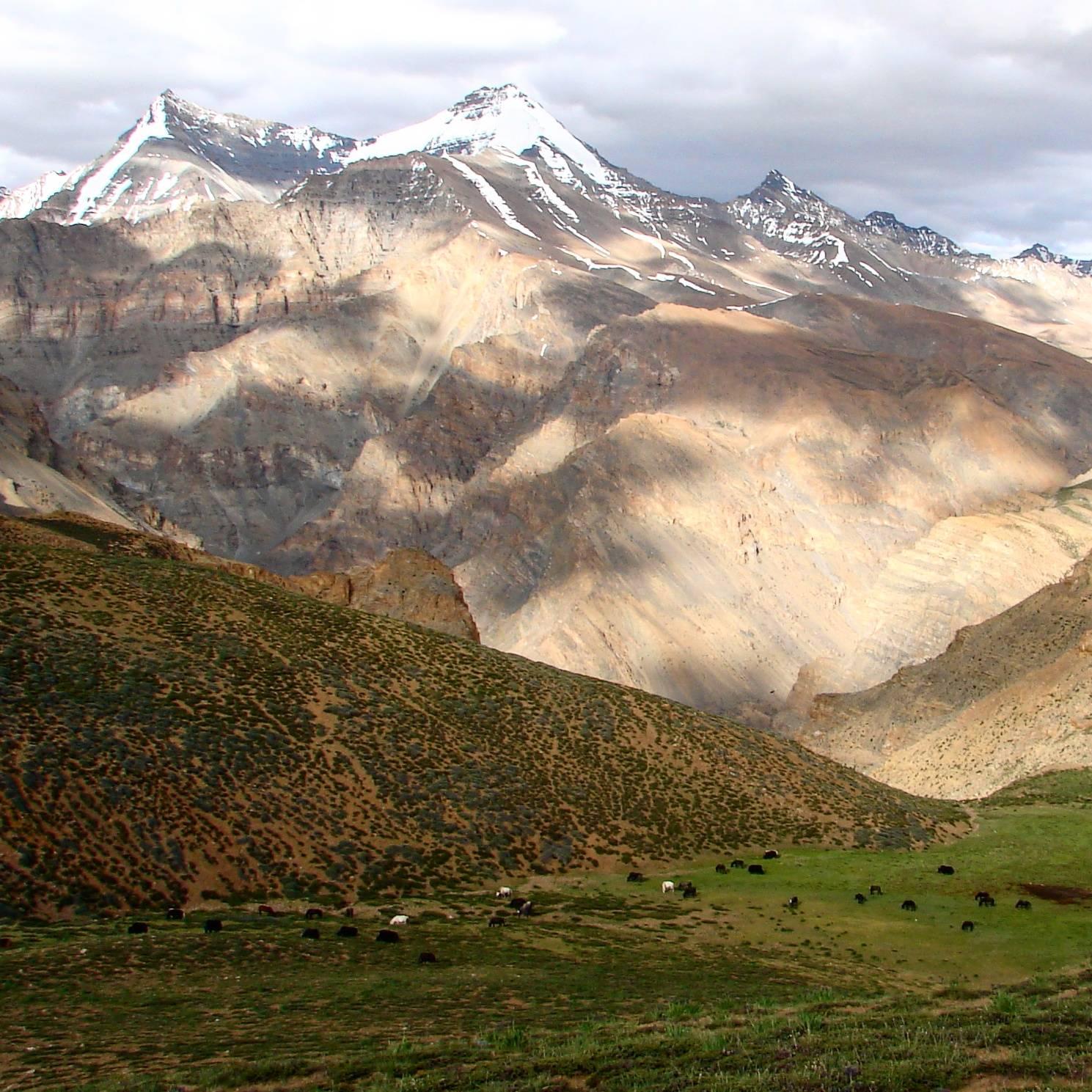 Kibber Wildlife Sanctuary, Himachal Pradesh