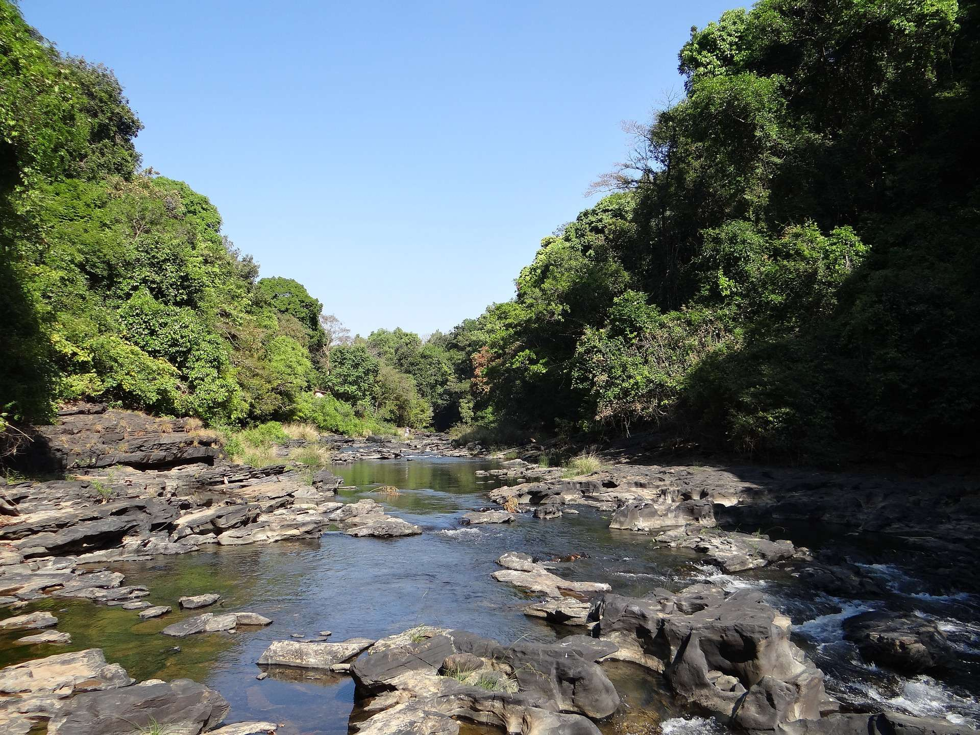 Mhadei Wildlife Sanctuary, Goa