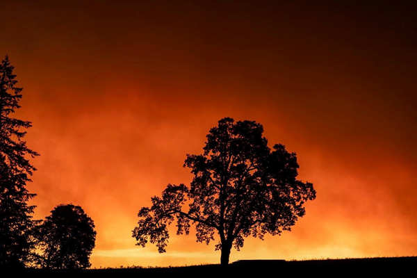 Wildfires: Death toll crosses 30 in US