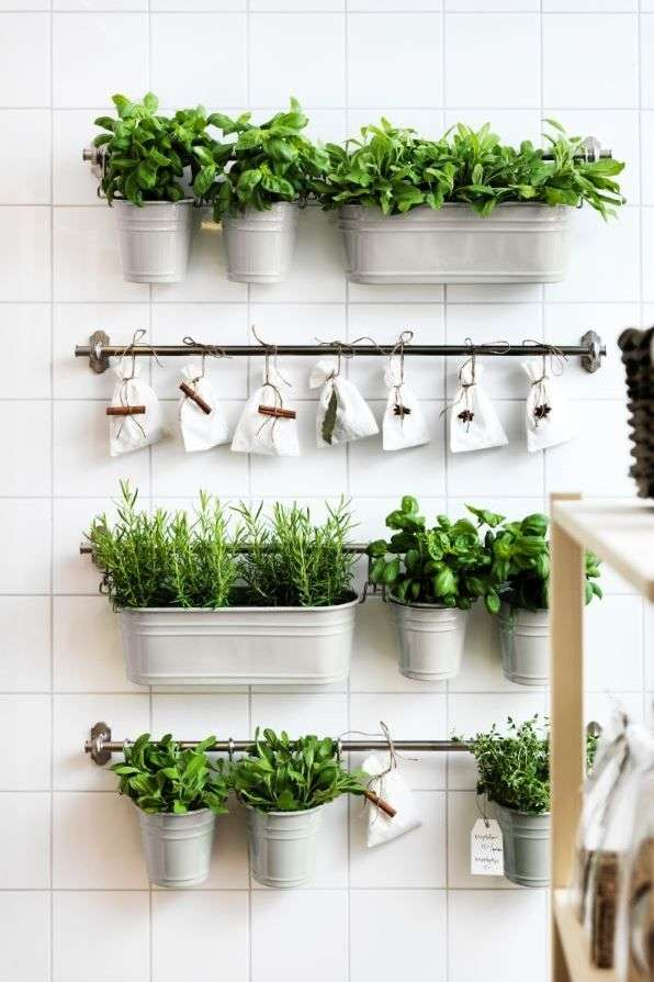 5 Indoor Herb Planters That Will Add A New Life To Your Kitchen Times Of India