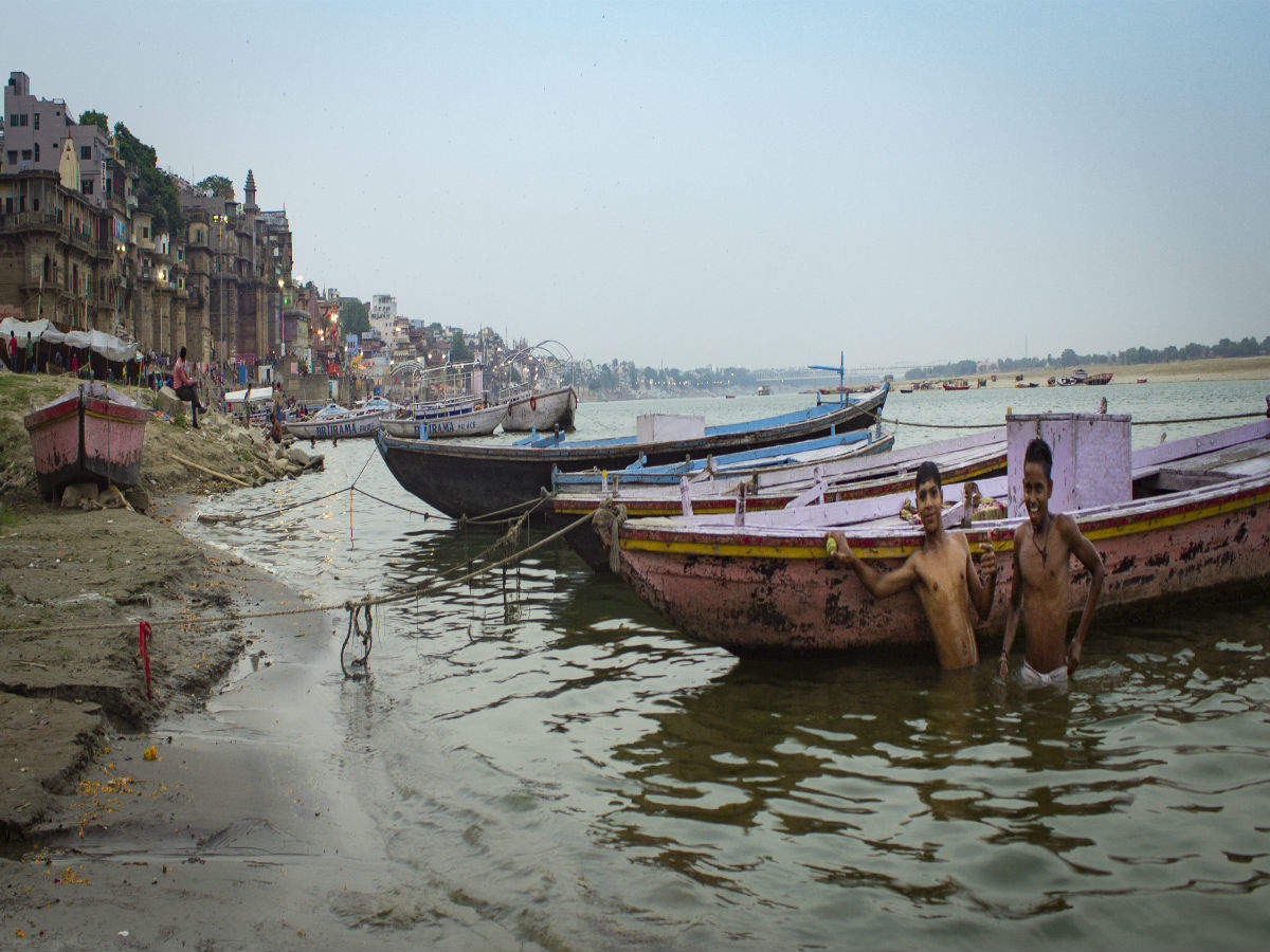My Ganga My Dolphin: India launches dolphin safaris on River Ganga to boost eco-tourism