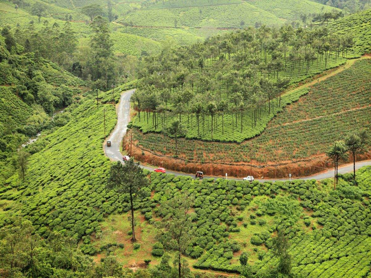 Kerala's Vagamon gets 'Green Checkposts' to curtail plastic waste
