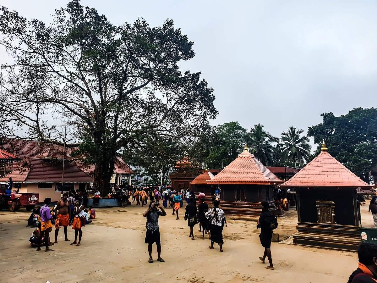 Sabarimala Temple: Health insurance and COVID-19 negative certificate mandatory
