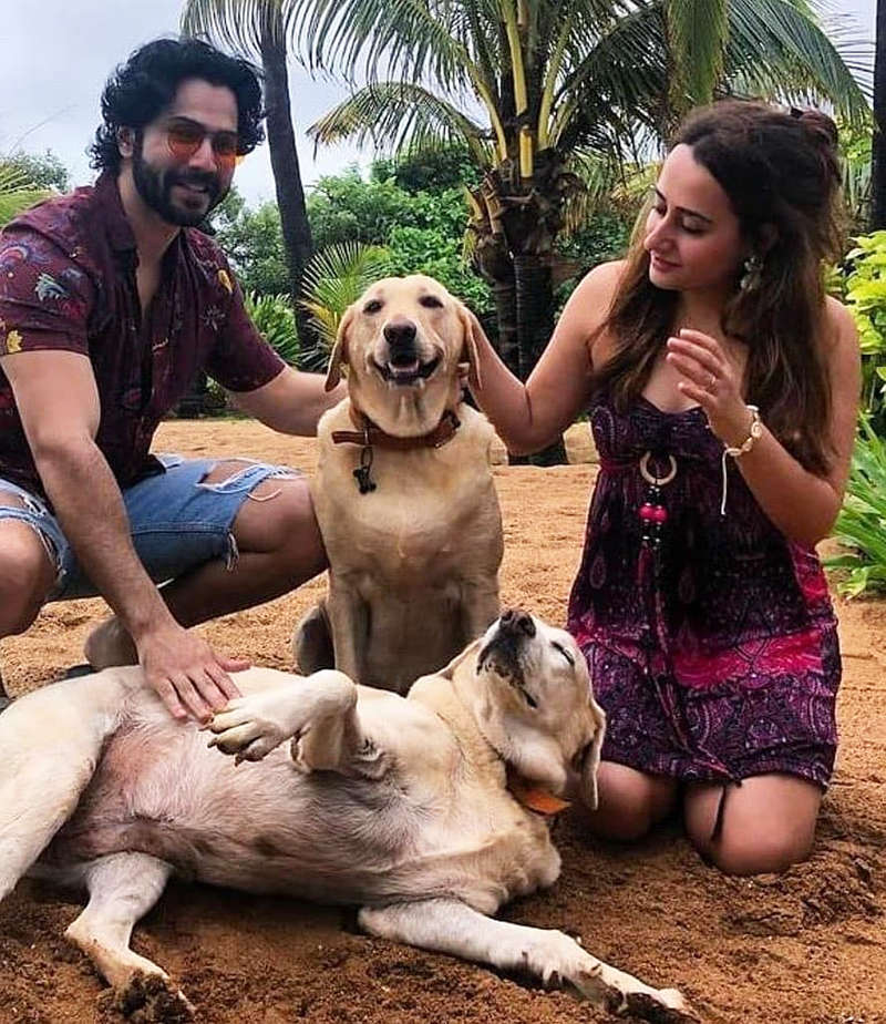 New picture from Varun Dhawan and ladylove Natasha Dalal's Goa trip is too cute to miss!