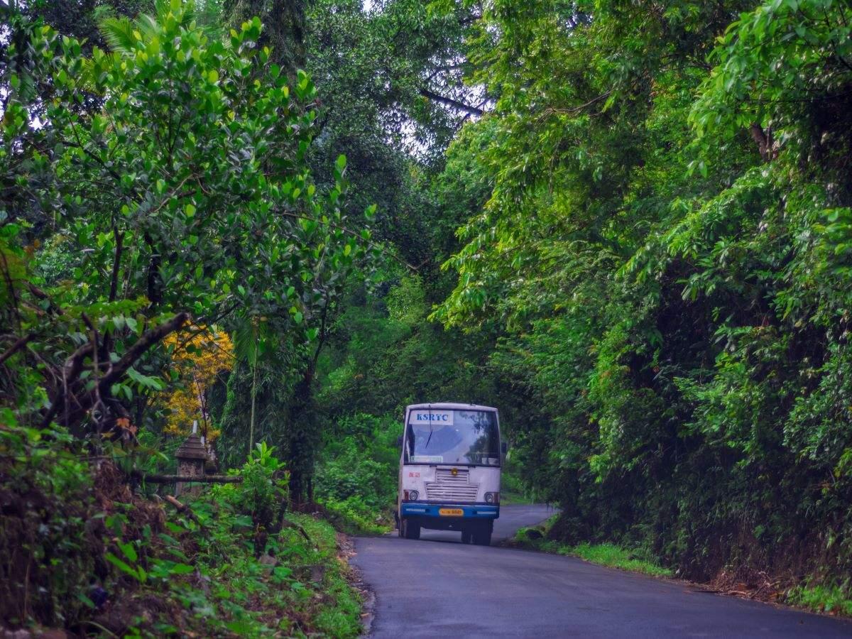 Kerala: Tourist spots gradually returning to normal after a hiatus