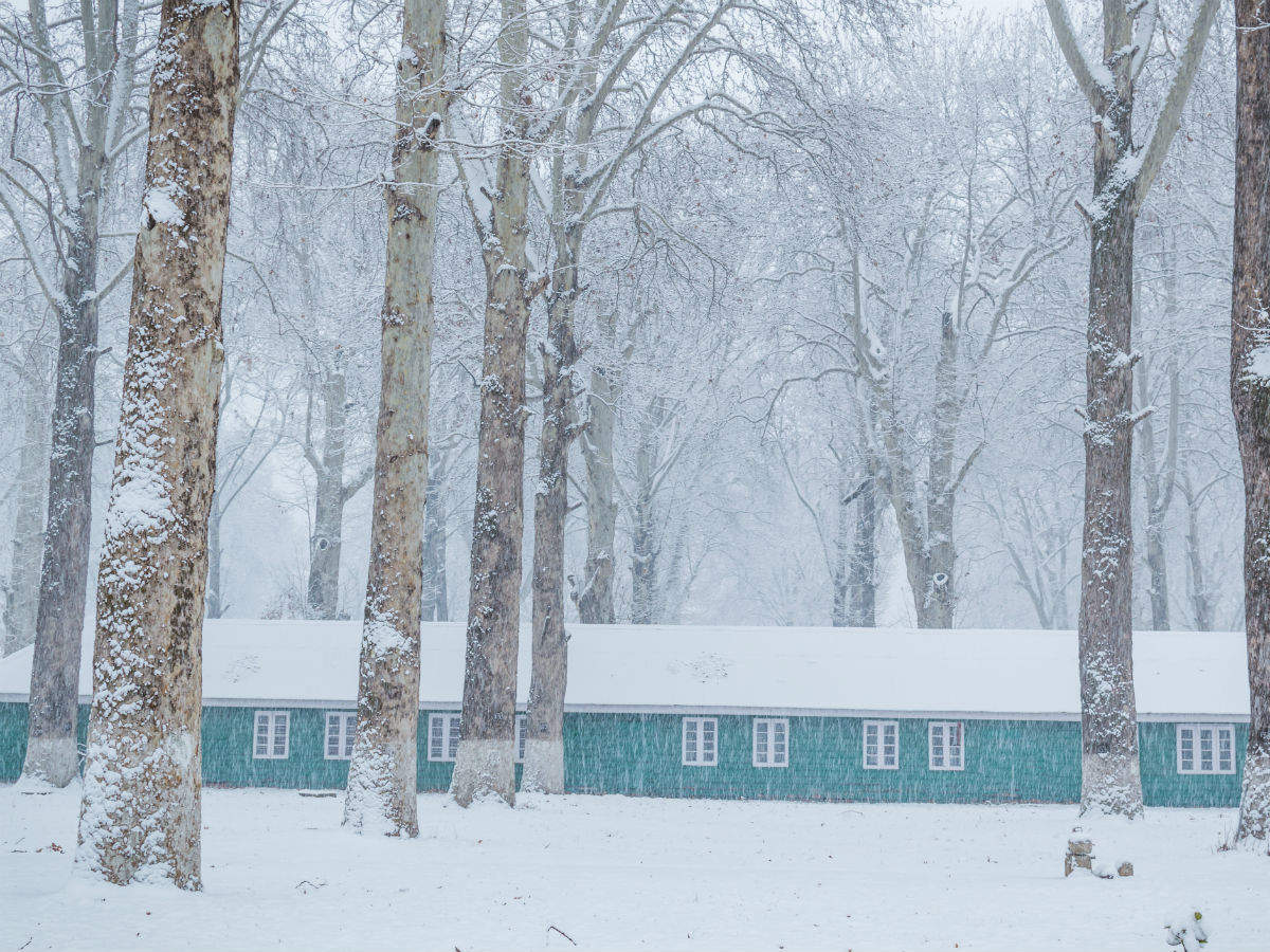 Kashmir experiences Chillai Kalan as cold waves likely to hit parts of north India
