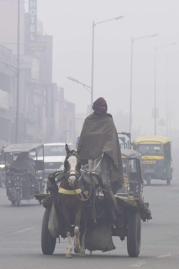 Dense fog engulfs parts of north India