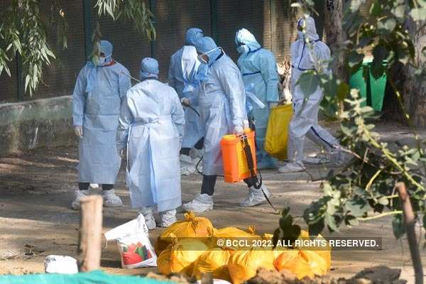 Delhi becomes ninth state to confirm bird flu