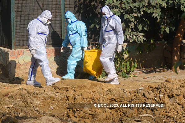 Delhi becomes ninth state to confirm bird flu