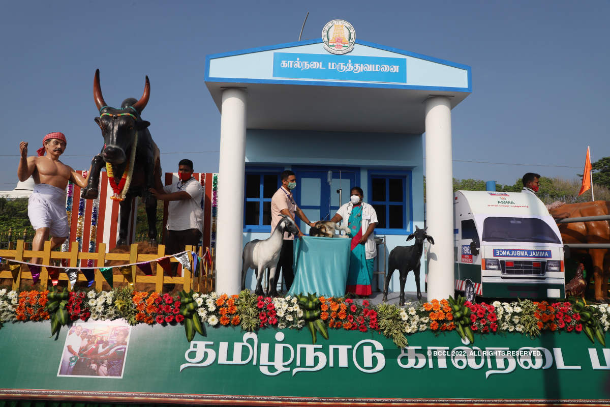 Pictures from Republic Day celebrations in Chennai