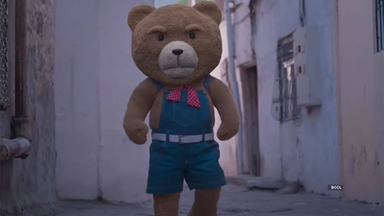 Teddy---B