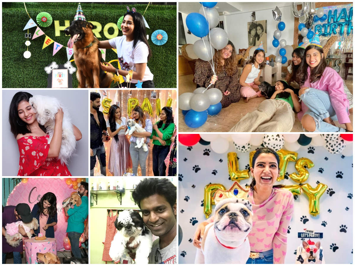 Celebrities who rang in their pet's birthdays