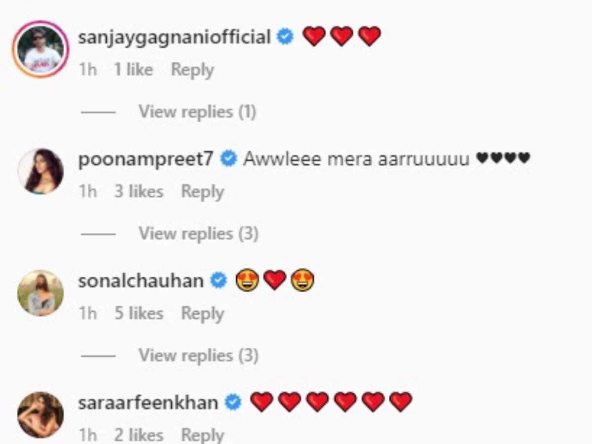 sanjeeda comment