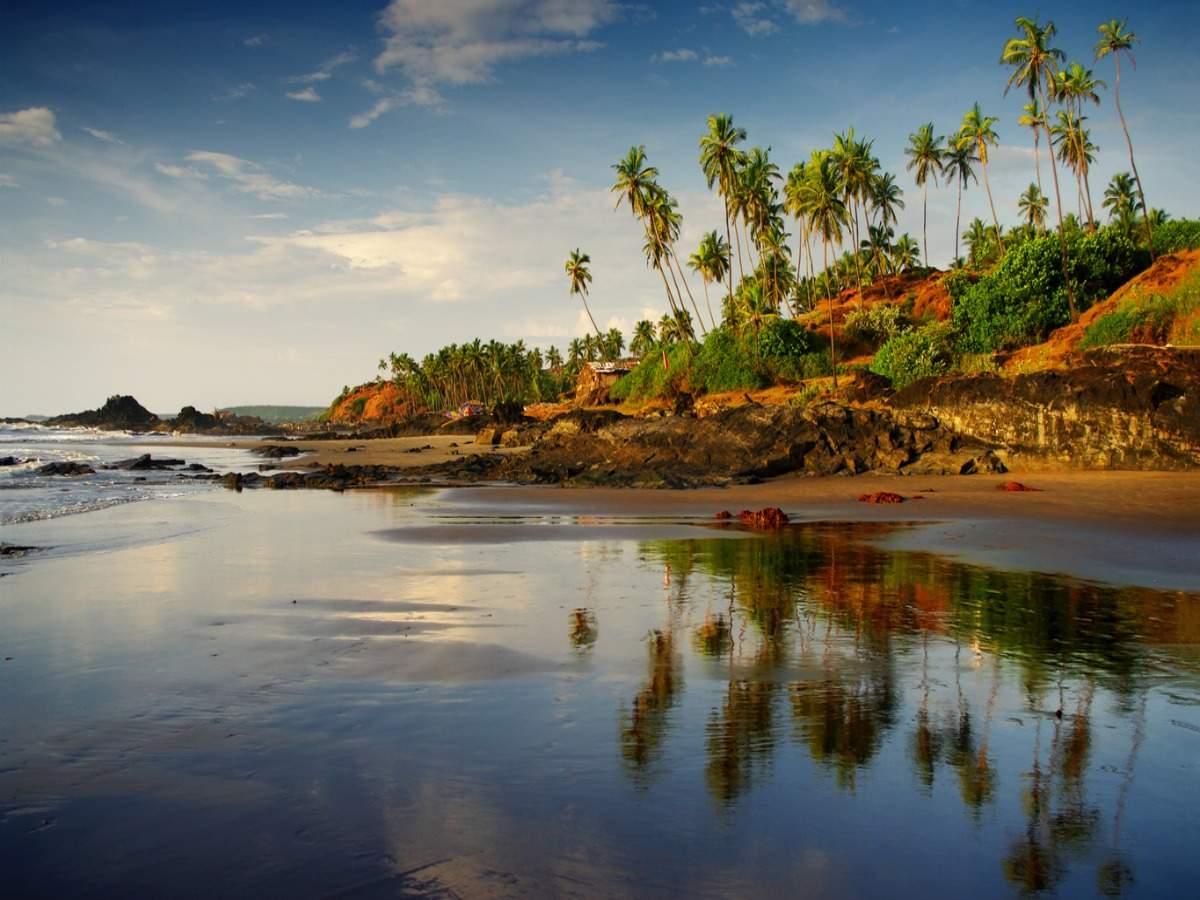Goa imposes night curfew until April 30