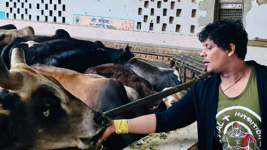 Vikram at Gaushala