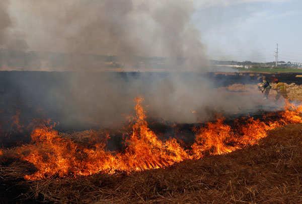 Israeli attacks: Death toll crosses 200 in Gaza