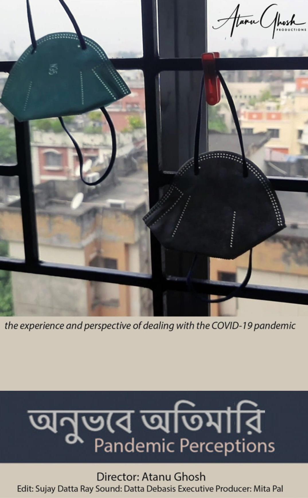 pandemic perceptions