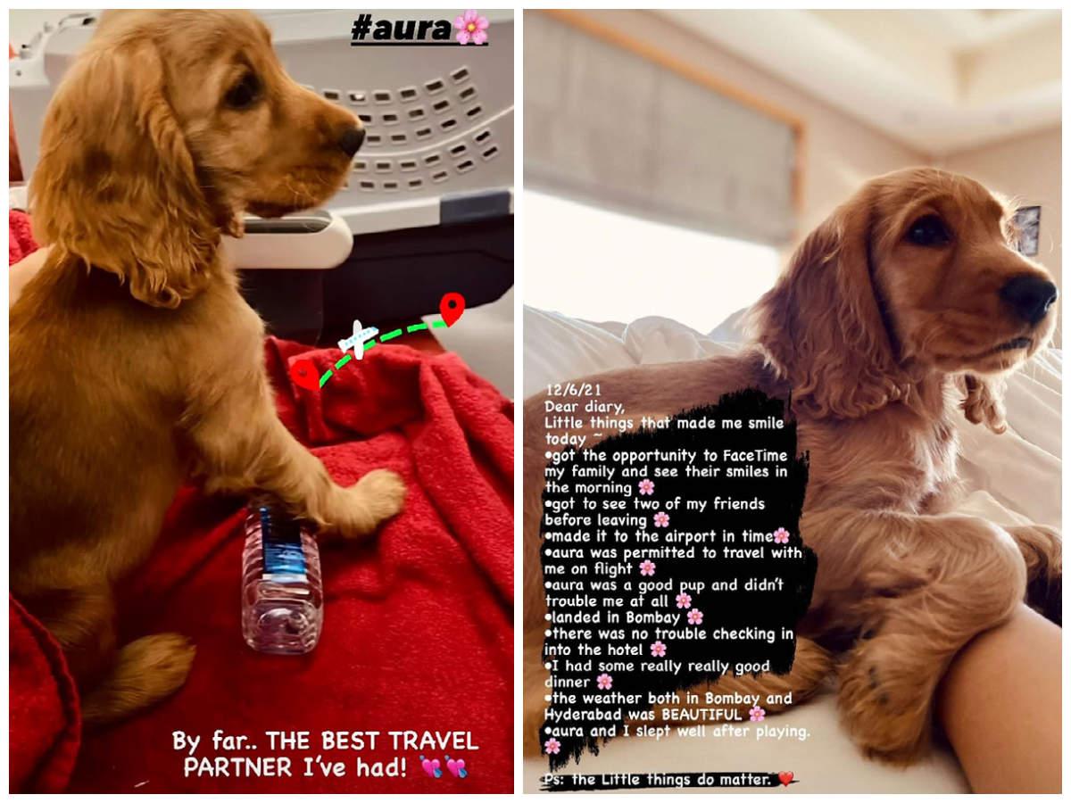 Rashmika Mandanna Travel Collage
