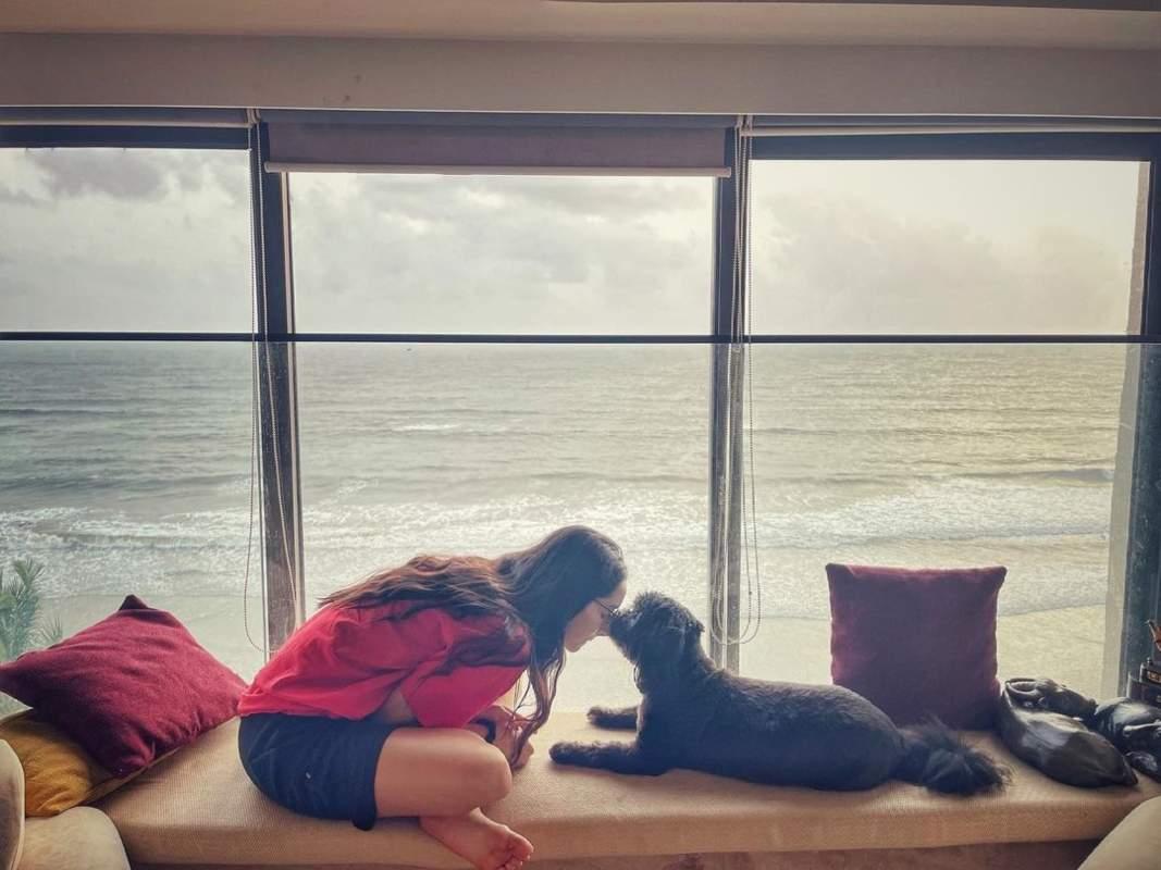 Celebrity pets who are Instagram superstars