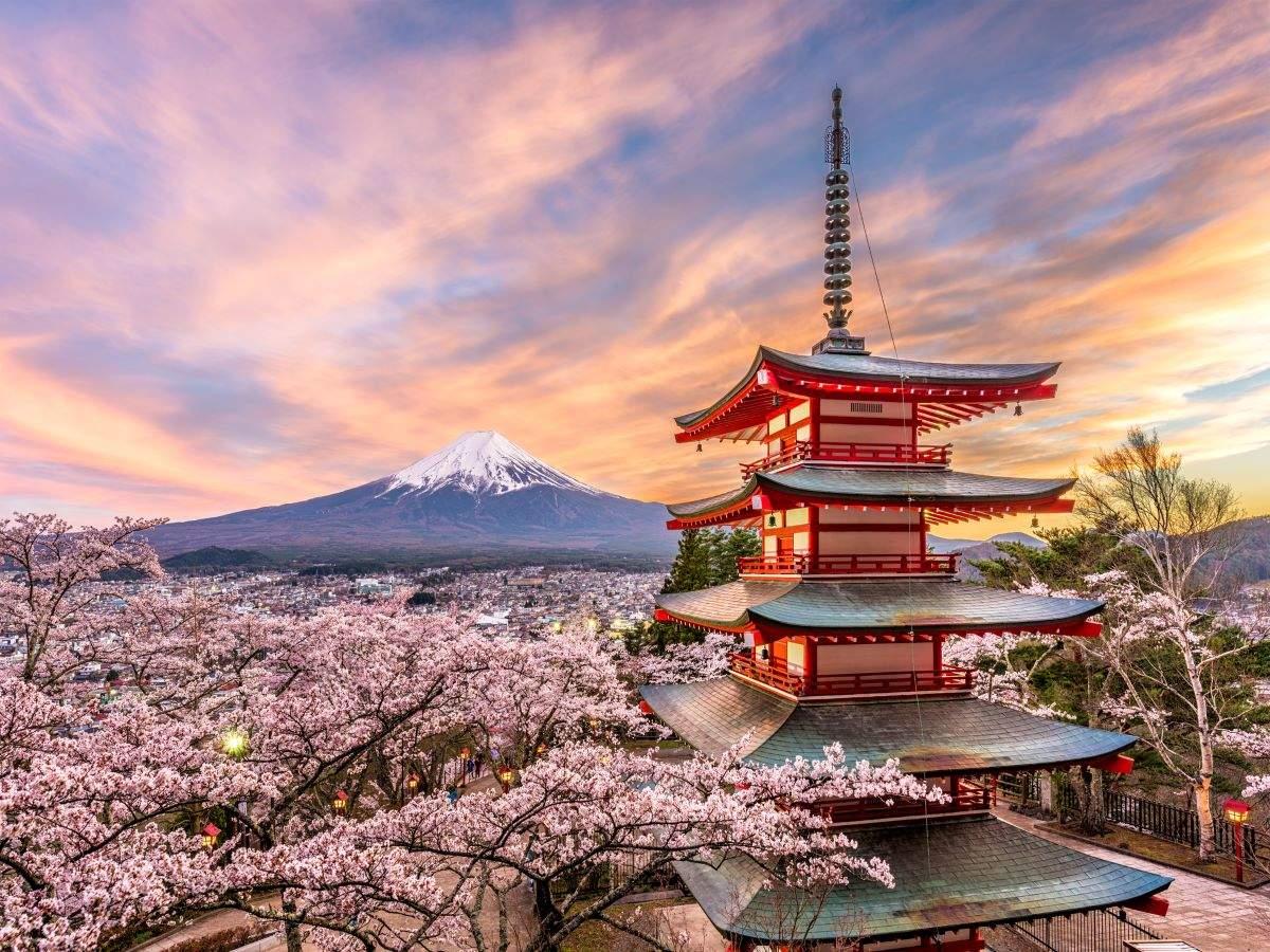 Japan starts accepting vaccine passport applications