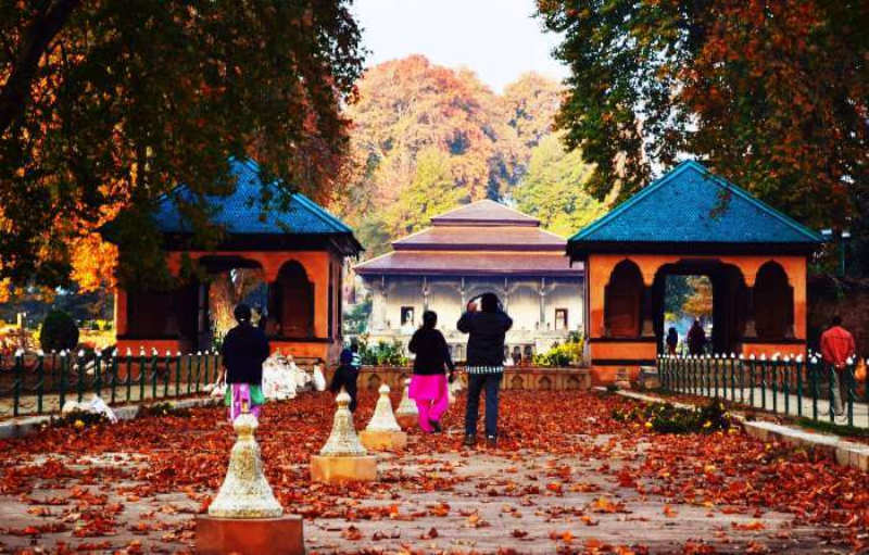 You can experience Autumn Beauty at these places in India