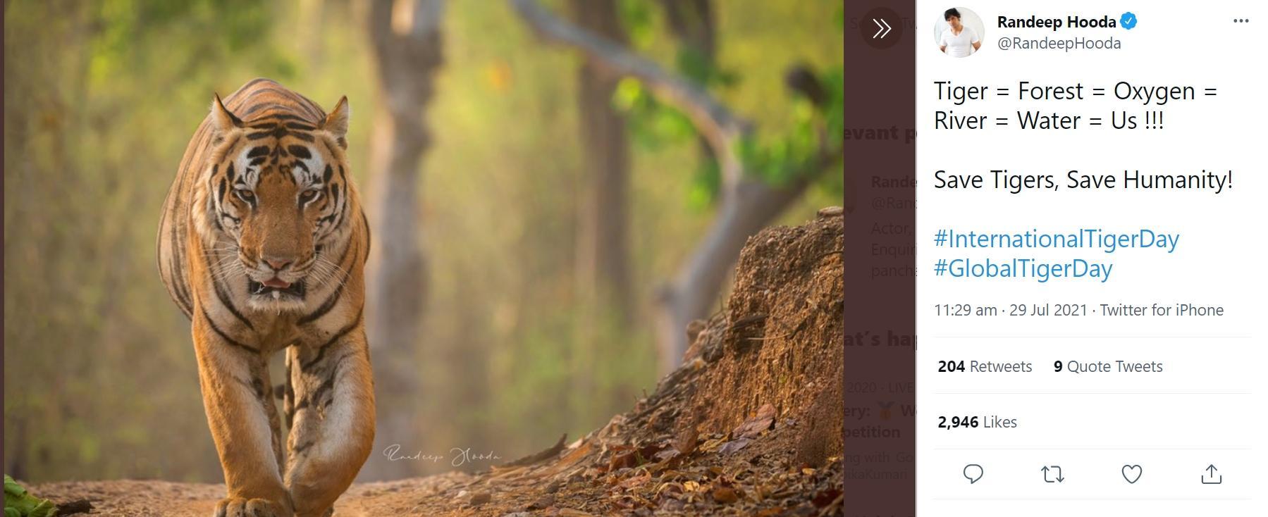 Randeep Hooda tuiteó el Día Internacional del Tigre