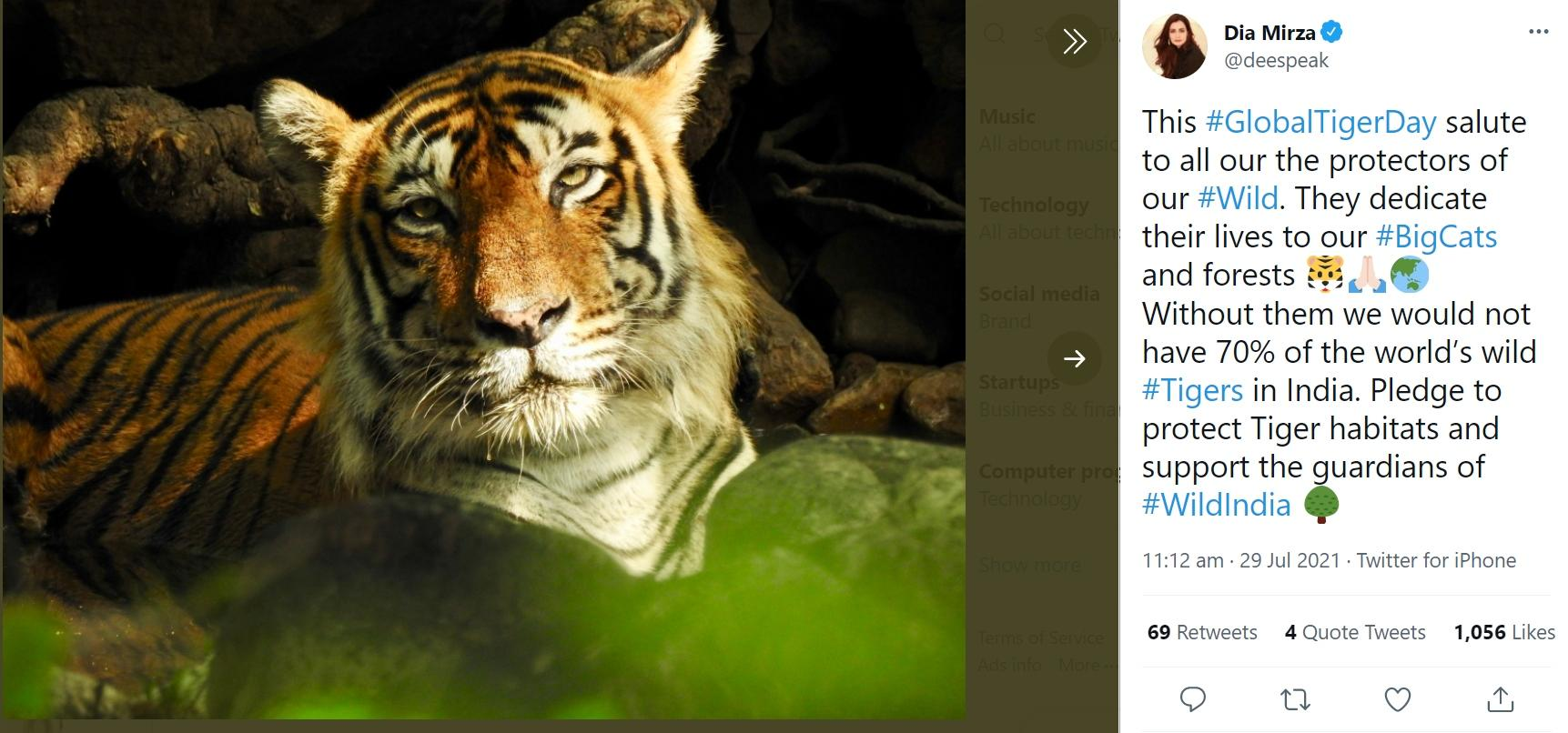 Dia Mirza tuiteó en el Día Internacional del Tigre