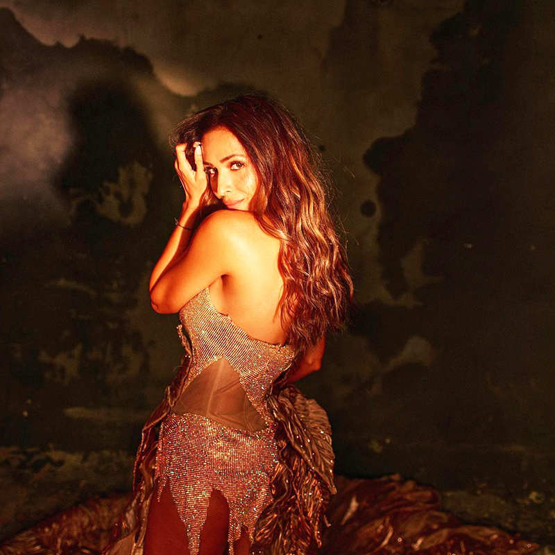 Malaika Arora is making temperatures soar with her new pictures in shimmery gown