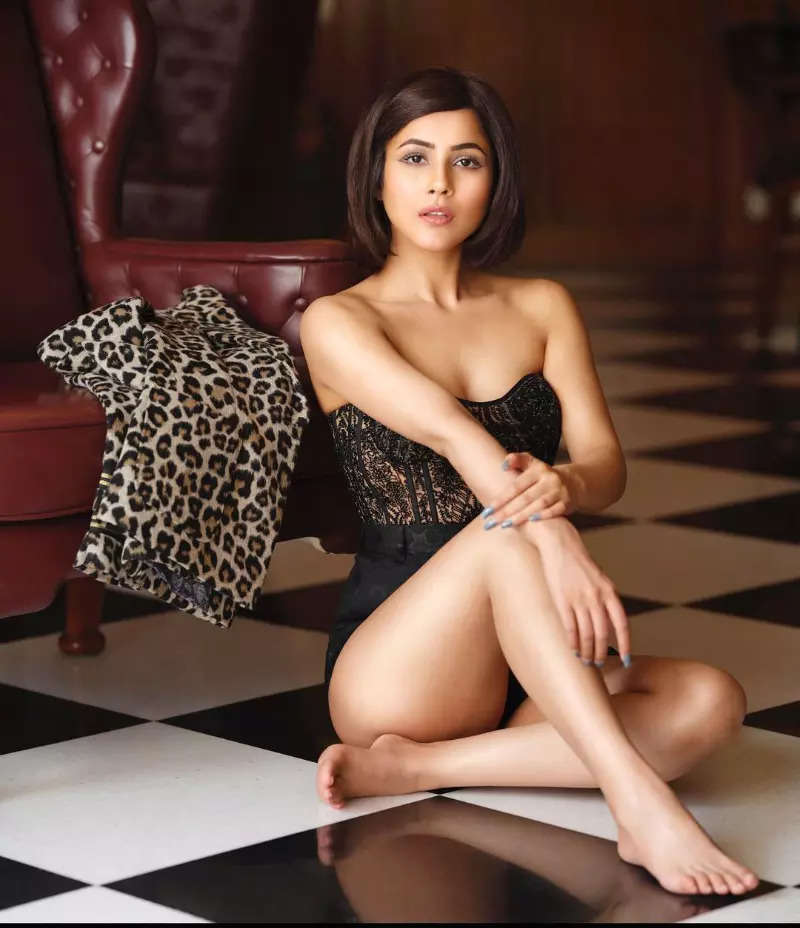 Fans are all hearts for Shehnaaz Gill's new pictures in a strapless corset and shorts