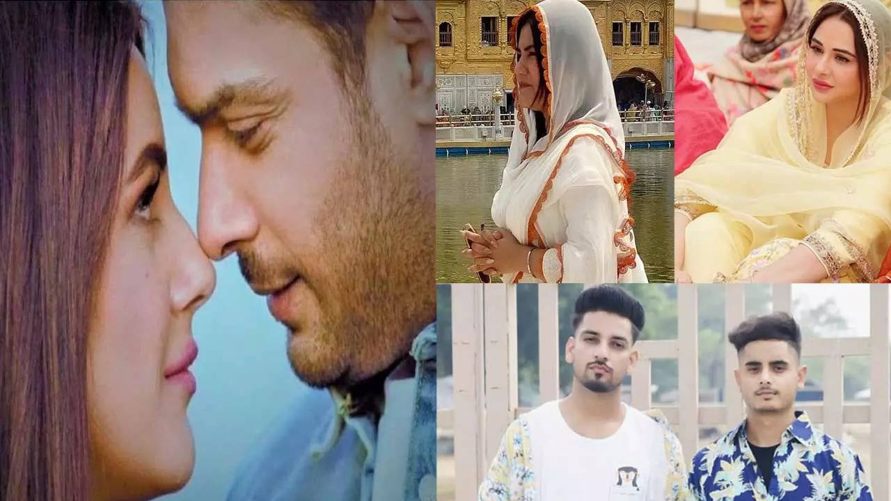 Stars who supported Shehnaaz after Sidharth's death