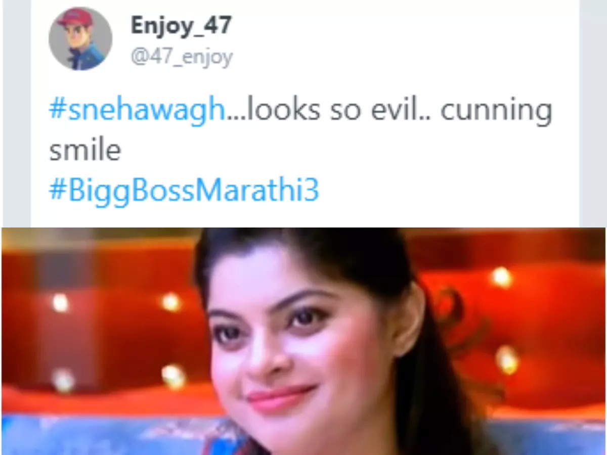 Sneha's plan and strategy