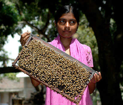 Women swarm around this 'queen bee'   India News - Times of India