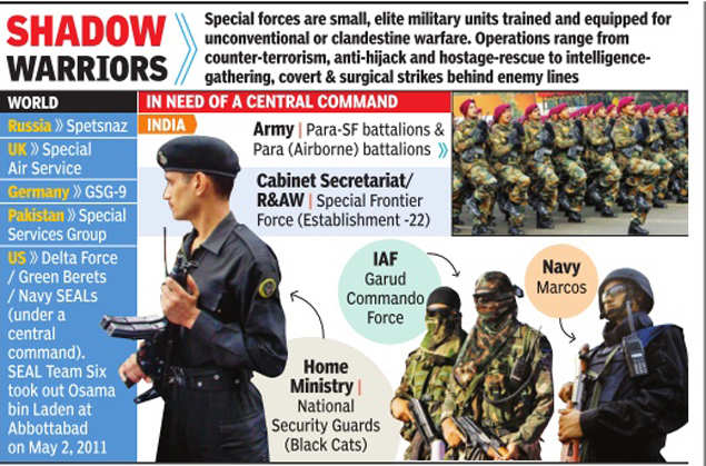 Para-special forces get two new battalions | India News