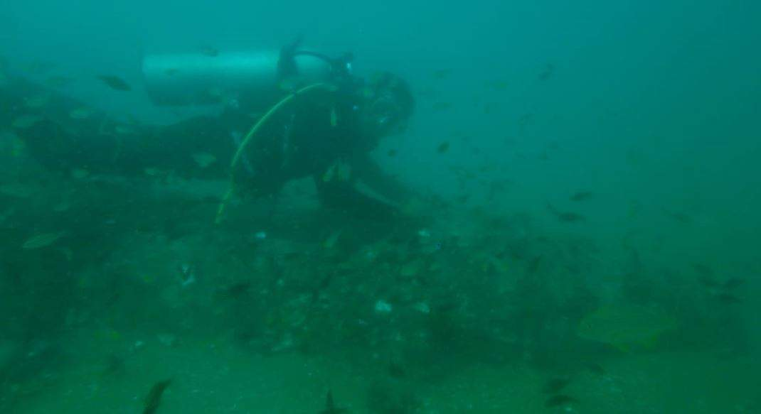 Fisherman-turned-scuba diver Chandru spotted a Sea Hawk fighter jet wreck 1.5km off the Chennai coast