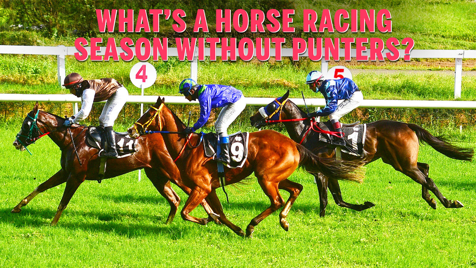 Horse racing betting guidelines for hypertension paddy power referendum betting