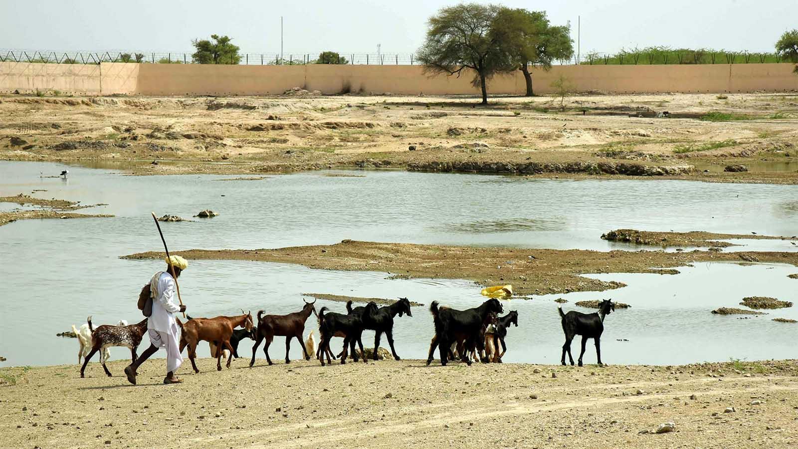 Rajasthan:
