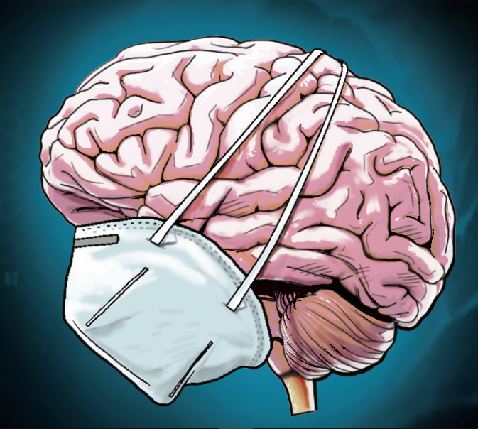 How Covid causes brain fog