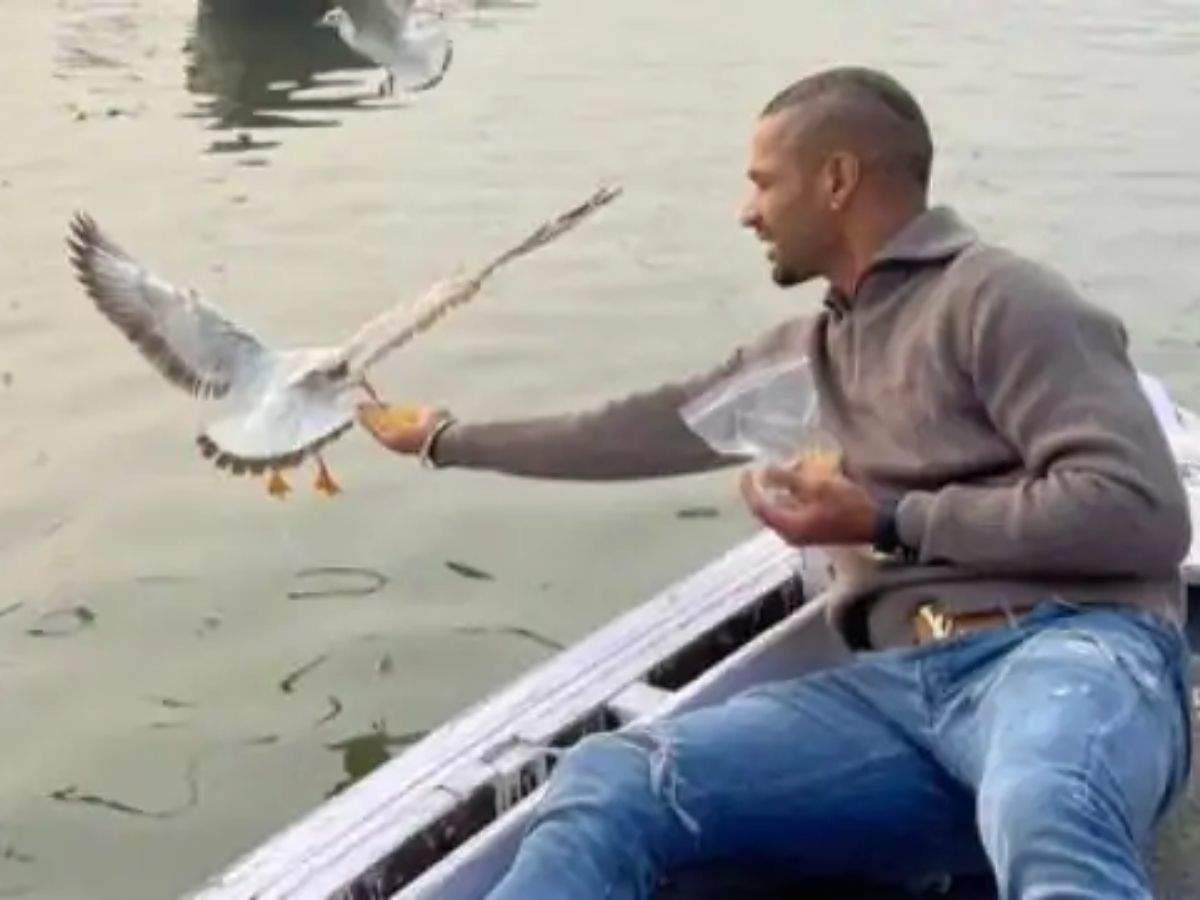 Shikhar Dhawan feeds birds amid bird flu, Varanasi DM says action to be taken against boatman