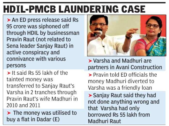 ED Traces Rs 55 Lakh of Bank Scam Funds to Sanjay Raut's Wife | India News