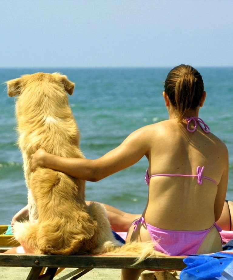 Vacation with your pet