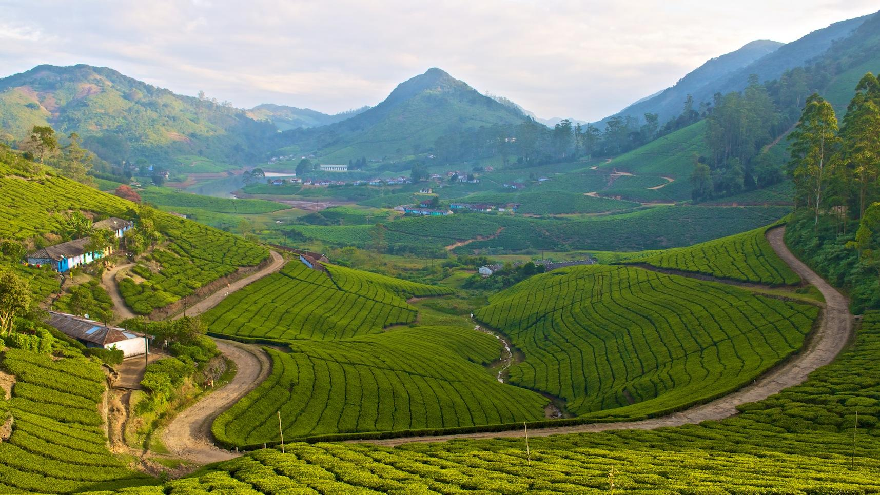 Meghamalai: Land of greens and blues