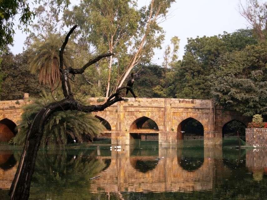 5 Delhi gardens that offer a green respite